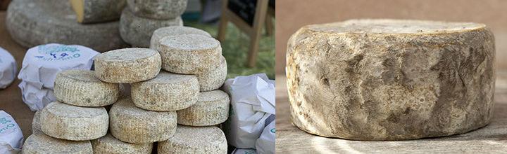 Nieuwe favoriet: Oudwijker Nederlands-Italiaanse kaas